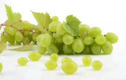 Bunch of white grapes on white with vine leaves branch Stock Photography