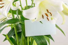 Bunch of white lilies whith blank card Royalty Free Stock Photos