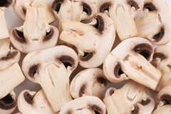 Bunch of white mushrooms close up. Royalty Free Stock Images