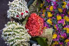 Bunch of White and pink flower street selling in details stock photography