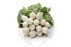 Bunch of white radish Stock Photo