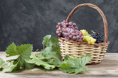 Bunch of white and red grape in a busket Royalty Free Stock Image