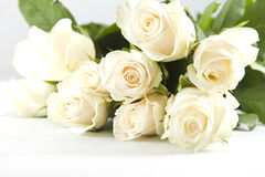 Bunch of white rose Royalty Free Stock Photos