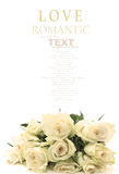 A bunch of white roses Stock Images