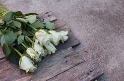 A bunch of white roses Stock Photography