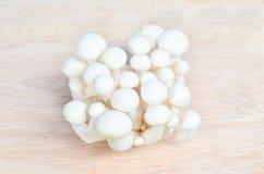 Bunch of white shimeji mushroom Stock Images
