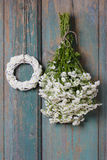 Bunch of white tiny chrysanthemums and white wicker wreath Royalty Free Stock Image
