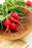Bunch of Whole Red Radishes Royalty Free Stock Photos