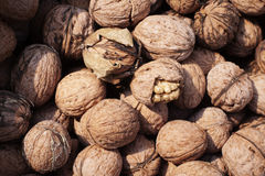 Bunch of whole walnuts Stock Photo