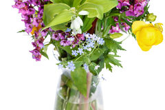 Bunch of wild flowers in glass vase Royalty Free Stock Image