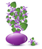 Bunch of wild violet Stock Images