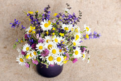 Bunch of wildflowers Stock Images