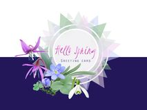 Hello spring. Greeting card with forest flowers. Bunch of wildflowers as Snowdrops, Trout lily and Liverwort. Vector illustration, realistic style vector illustration