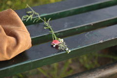 A bunch of wilted wild flowers on a bench. Next to a bag Royalty Free Stock Photography