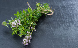 Bunch of Winter Savory Royalty Free Stock Photos