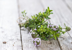 Bunch of Winter Savory Royalty Free Stock Images