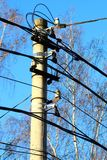 Bunch of wires on the pole. Stock Image