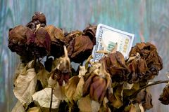 Withtered Flowers And Dollars Stock Photos