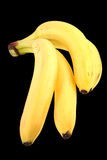Bunch yellow bananas Stock Photography