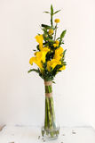 Bunch of yellow callas in the vase Royalty Free Stock Photography