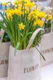 Bunch of yellow Daffodils in canvas bag. With written word: flowers Royalty Free Stock Photo