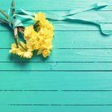 Bunch of  yellow  daffodisl flowers on turquoise wooden backgrou Stock Photos