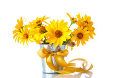 Bunch of yellow daisy flowers Stock Image