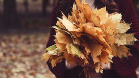 Bunch of yellow leaves in the hands of women. Autumn park. Color correction done stock footage