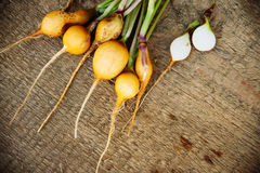 Radish on wooden background. Bunch of yellow radish on wooden background, fresh harvest, green vegetables Stock Photos