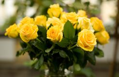 Bunch of yellow roses Stock Photography