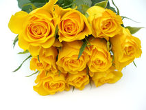 Bunch of yellow roses. On white background Royalty Free Stock Images