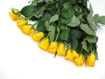 Bunch of yellow roses. On white background Stock Photo
