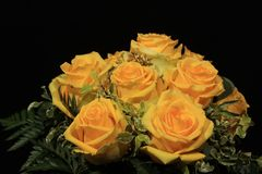 Bunch of yellow roses. Bouquet of wonderful yellow roses Royalty Free Stock Photos