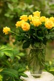 Bunch of yellow roses in a transparent bowl. Beautiful bunch of yellow roses in a transparent bowl Royalty Free Stock Photography
