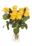 Bunch of yellow roses in a vase. White background Royalty Free Stock Images