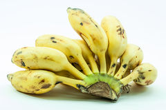 Bunch of yellow small banana fruit. Of kerala india Royalty Free Stock Photography