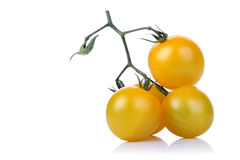 Bunch of yellow tomatoes on white backgrond Royalty Free Stock Photography