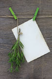 Bunche of a chaber and sheet of paper for the message on clothes Royalty Free Stock Photo