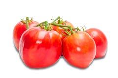 Bunche dei pomodori Fotografia Stock