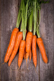 Bunched carrots Royalty Free Stock Image