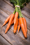 Bunched carrots Royalty Free Stock Photos