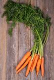 Bunched carrots Royalty Free Stock Photo