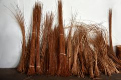 Osier stakes and reed bunched. Bunched osier stakes and reed in a basketry royalty free stock images