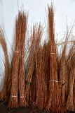 Osier stakes and reed bunched. Bunched osier stakes and reed in a basketry stock photo