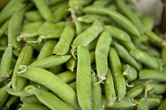 Bunched Snap Peas Royalty Free Stock Images