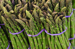 Bunches of Asparagus Stock Images