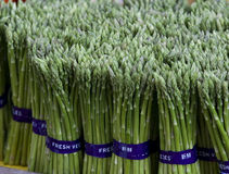 Bunches of Asparagus. Bunches of fresh asparagus. This is considered to be a top end vegetable stock images