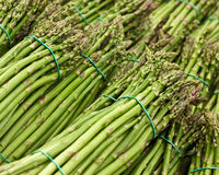 Bunches of Asparagus Royalty Free Stock Photos