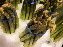 Asparagus on ice stock image