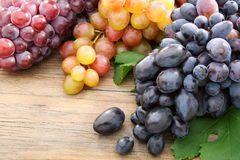 Bunches of black grapes and pink. Stock Photos